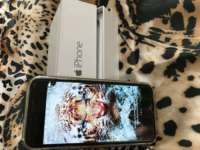 iPhone 6 64 GB Silver iPoster.ua