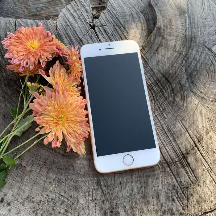 iPhone 6s 16GB Rose Gold БУ iPoster.ua